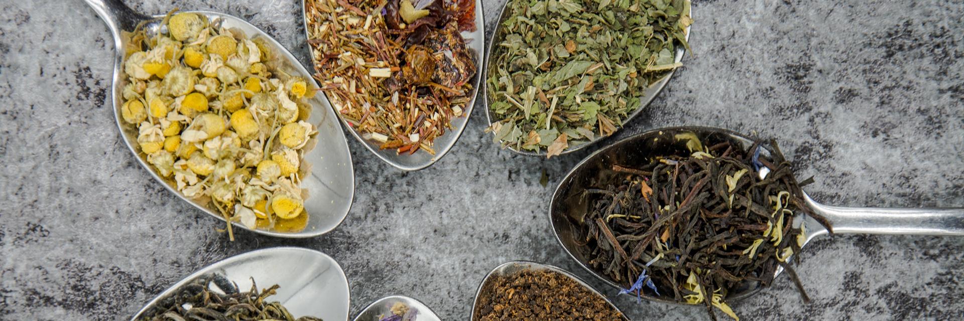 herbal tea varieties in spoons